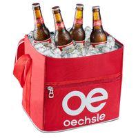 Combo-Cerveza-Budweiser----Cooler-Playero-969951