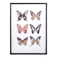 Cuadro-Mariposas-Color-41x29cm-848748_1