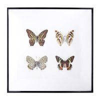 Cuadro-Mariposas-Color-Cuadrado-44cm-848749_1